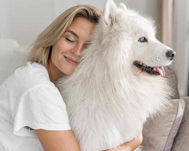 วิธีการดูแลสุนัข
